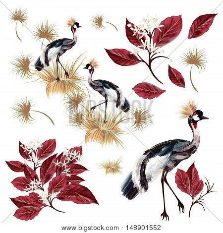 A collection of vector realistic birds and leafs for design