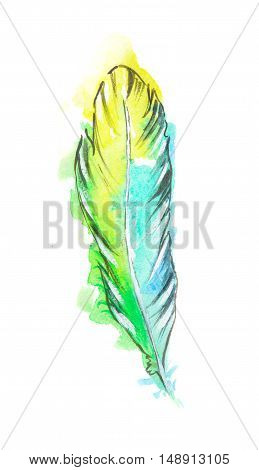 Isolated watercolor colorful feather. Birds feathers for boho style and decoration.