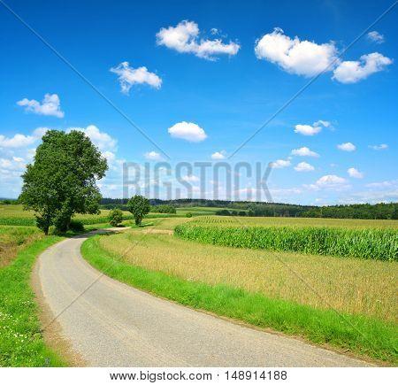 Road in rural landscape in Czech Republic.