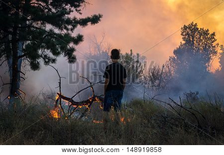 man near watching a forest fire. danger of fire.