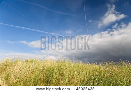 Dramatic cloudy sky above yellow grass in Norway