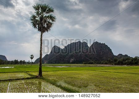 Golf course in the countryside in Mianmar