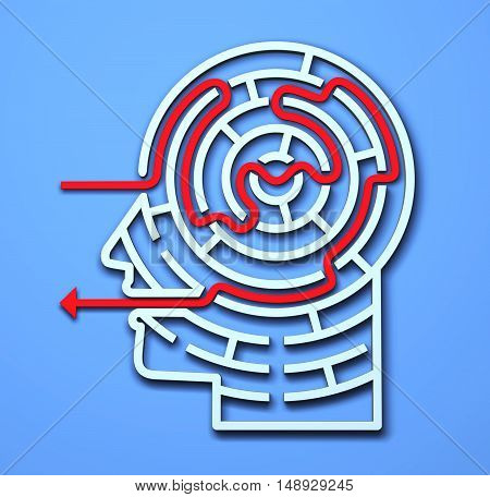 Maze Head 3D brain strategy success complexity brainstorming