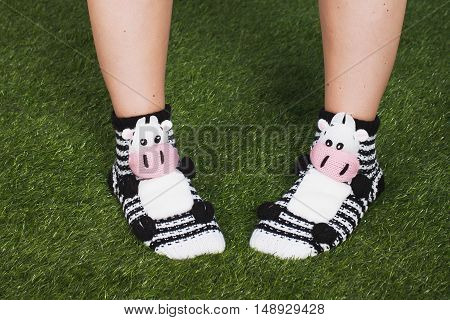 Close up of woman feet wearing funny socks with with happy. New Year and Christmas time always be and stay positive concept