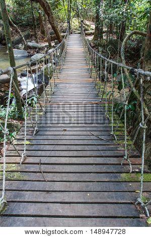 Pedestrian suspension bridge over river in rainforest