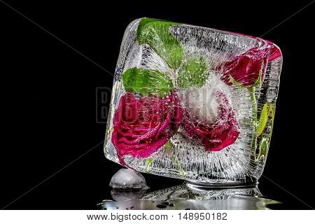 Ice sculpture with red roses on a black background