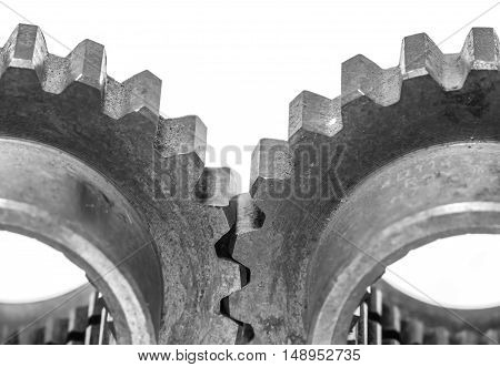 metal cog gears isolated on white back ground. black white closeup