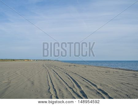 Tire tracks on the beautiful sandy beach