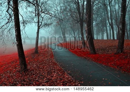 Autumn landscape of foggy autumn park with red fallen autumn leaves. Autumn alley in the fog - gothic autumn landscape in cloudy weather with bare red autumn trees along autumn alley