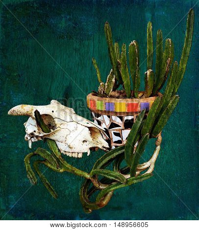 Sheep skull and Mexican mosaic pot plant with cactus on a rustic blue wood background. Digitally filtered and textured image