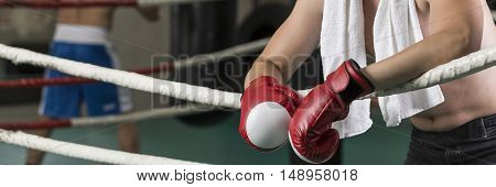 View of boxer with boxing gloves resting on the ropes in the ring