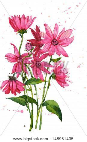 Freehand painted pink flowers bouquet isolated on white