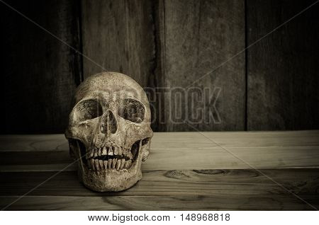 Still life the human skull on a wooden background