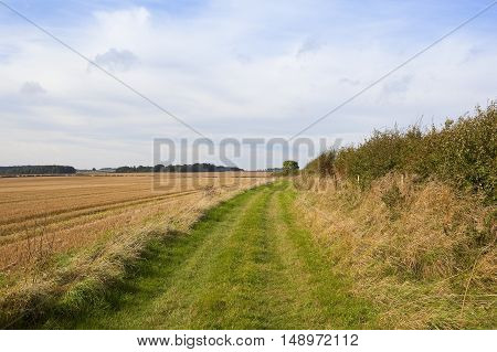 Harvested Fields And Bridleway