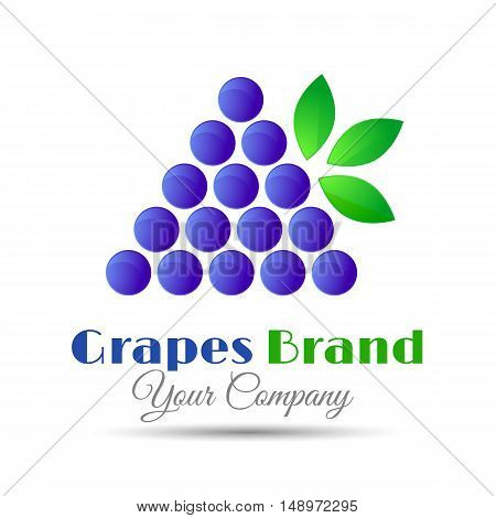 Vector logo design template. Branch of grape with leaves. illustration for your business company. Creative abstract colorful concept.