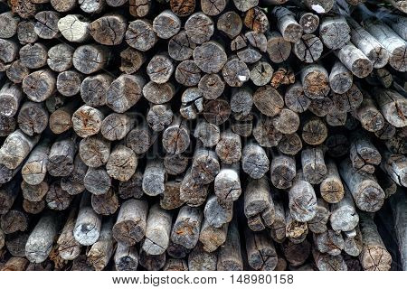Background of dry chopped firewood logs from tropical trees stacked up on top of each other in a pile.