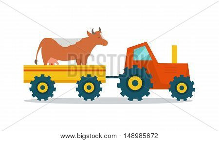 Domestic animals transportation vector. Flat design. Tractor with trailer caring cow. Cattle mowing on the farm illustration. Farming concept for meat, agricultural, transport companies. On white.