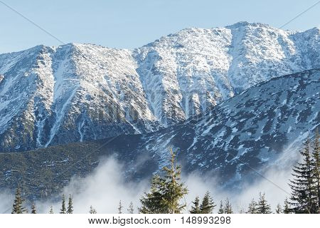 Winter white mountain peaks with green conifer trees landscape