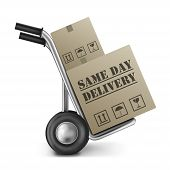 Same Day Delivery Cardboard Box