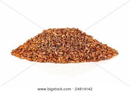 Bilta Seed Herb