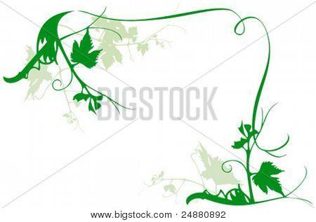Vine frame - vector illustration - foliage, nature design