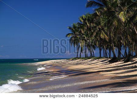 Maceio Gunga Beach