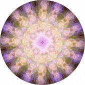 Angelic Energy Meditation Mandala - 16 Section Symmetrical Circular Pink And Orange Highly Detailed  poster