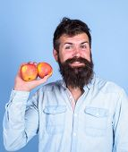 Apples Antioxidant Compounds Responsible Health Benefits. Nutritional Choice. Man With Beard Hipster poster