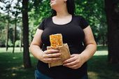 Unhealthy Fattening Food, High-calorie Snack, Eating On The Go, Take-out Meals. Overweight Woman Eat poster