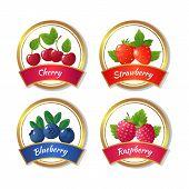 Berry Jam And Marmalade Labels. Fresh Summer Fruits Stickers Vector Template. Natural Jam Emblem Str poster