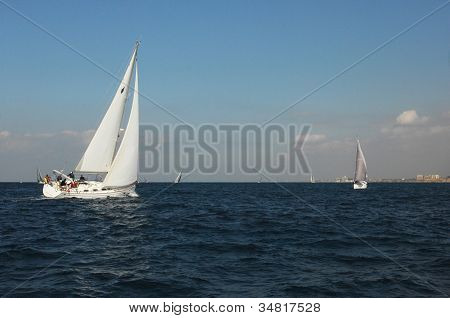 Racing Yachts In A Sea