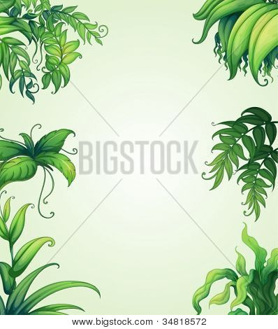 illustration of various leaves on green background