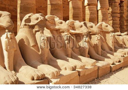 Ancient Statues In The Karnak Temple, Luxor
