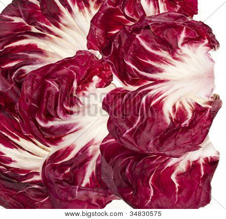 Fresh Red Cabbage Radicchio Rosso leaf texture