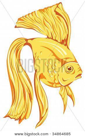 Beautiful Golden Fish Vector
