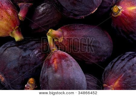 Black Mission Figs (ficus Carica)