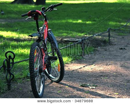 The Bicycle In The Park