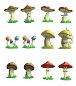image of yellow milk cap  - Illustraion of mushrooms - JPG