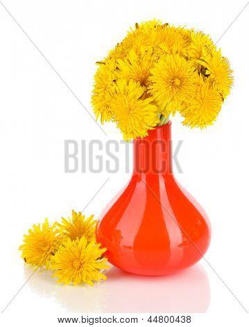 -Leão flores em vaso isolado no branco