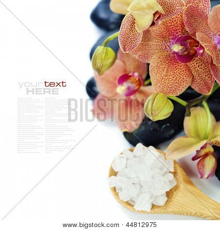 spa concept (zen stones, sea salt, orchid flower) over white (with easy removable sample text)