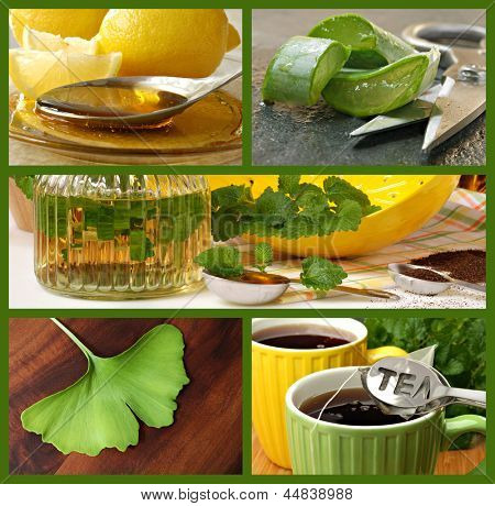Collage of alternative healing remedies (includes honey with lemon, aloe vera, lemon balm plant, herbal tea and a ginkgo leaf)