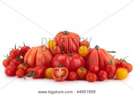 differents variety of tomatoes
