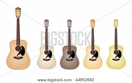 Beautiful Vintage Acoustic Guitars on White Background