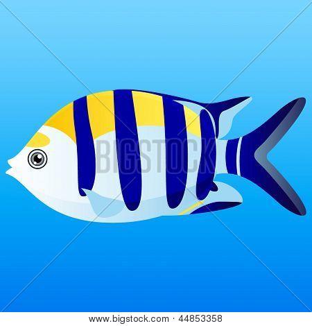 Peixe!
