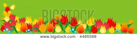Spring Banner With Tulips
