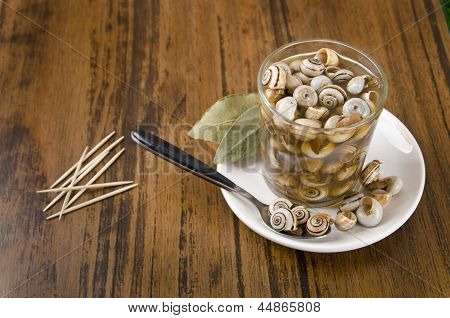 Snails And Toothsticks