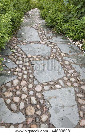 Stone Alley In English Garden