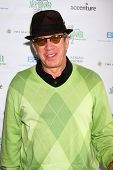 LOS ANGELES - APR 15:  Tim Allen at the Jack Wagner Celebrity Golf Tournament benefitting the Leukem