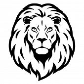 stock photo of leo  - Lion head - JPG
