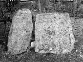 stock photo of conquistadors  - Mayan glyphs on a stele in Coba in the Jungles of Quintana Roo Mexico - JPG